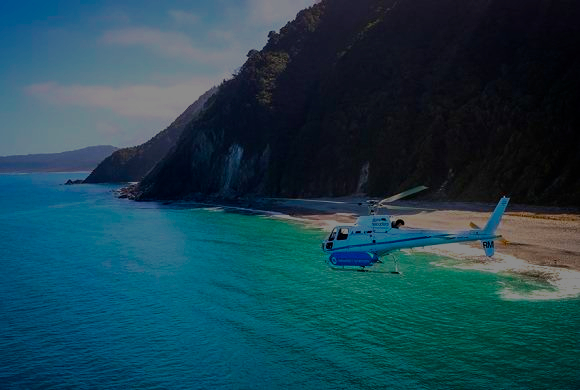 Hunting and whalewatching, Whale Watching - New Zealand Hunting and Travel Package, Helicopter tour, red stag hunting